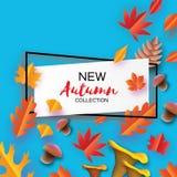 Jesień w papieru cięcia stylu Origami liście, pieczarka stożek Cześć jesień septyczny ośmiornica Prostokąt rama dla teksta royalty ilustracja