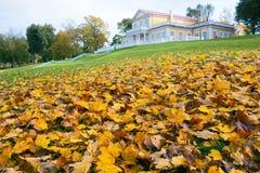 Jesień w parku na ulicach i starożytna manor zdjęcie royalty free