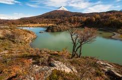 Jesień w Patagonia Tierra Del Fuego, argentyńczyk strona Zdjęcia Royalty Free