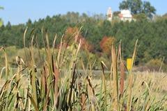 Jesień w południe Serbia 2 Zdjęcie Royalty Free