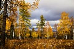 Jesień w Południowych Urals, Rosja Zdjęcia Royalty Free