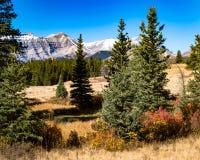 Jesień w Rockies obraz royalty free