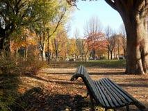 Jesień w włoszczyzna parku Zdjęcia Stock