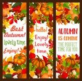 Jesień wakacje dziękczynienie dnia sztandaru set Zdjęcie Stock
