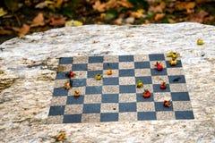 Jesień warcaby Zdjęcie Royalty Free