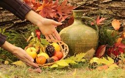 Jesień wciąż życie Obraz Stock