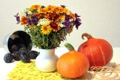 Jesień wciąż życie Zdjęcia Stock