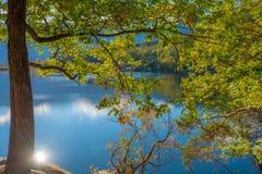 Jesień widok na Jeziornym Monticolo, Południowy Tyrol Obrazy Stock