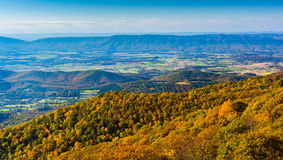 Jesień widok od linii horyzontu przejażdżki w Shenandoah parku narodowym, Virg Fotografia Royalty Free