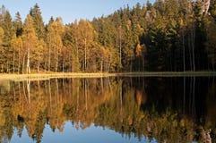 jesień wieś zdjęcie stock