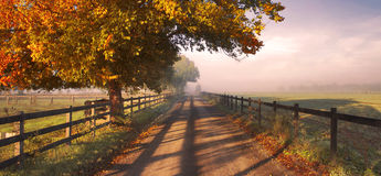 jesień wieś obrazy stock