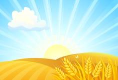 Jesień wschodu słońca pola royalty ilustracja