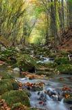 jesień wysokiej góry rzeczny strumień Zdjęcie Stock
