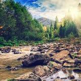 jesień zakrywający spadać lasowy ziemi krajobraz opuszczać kolor żółty most nad rzeką w ranku kolorowy lasowy bajka widok w lesie Zdjęcia Stock