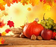 Jesień zbierający owoc i warzywo na drewnie zdjęcia royalty free