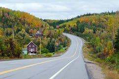 jesień zielonych drogowych słońca drzew pogodowy kolor żółty Obrazy Stock