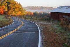 jesień zielonych drogowych słońca drzew pogodowy kolor żółty Zdjęcia Royalty Free