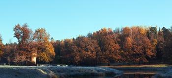 Jesień zmierzch tworzył w drewnach lokalizować w Petersburg Rosja zmierzchu króko przedtem Pavlovsk park Zdjęcia Stock
