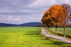 Jesień -14 Obrazy Royalty Free