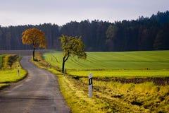 Jesień -8 Zdjęcia Stock