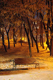 jesień ławki noc parka krótkopęd Fotografia Stock