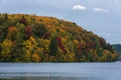 Jesień barwi drzewa i lasu w Lithunia Zalieji ezerai Krajobraz i natura Jezioro w przedpolu Zdjęcia Stock