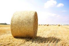 jesień bel pola siano Russia Zdjęcie Royalty Free