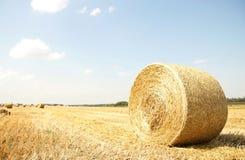 jesień bel pola siano Russia Fotografia Stock