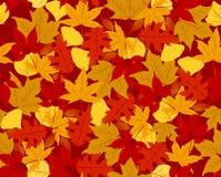 jesień bezszwowy deseniowy Zdjęcie Stock