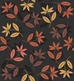 Jesień bezszwowy wzór z kwiatami Obraz Royalty Free