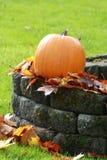 jesień biel odosobniony dyniowy Obrazy Stock