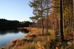 Jesień brzeg jeziora Zdjęcia Stock