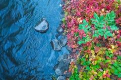 Jesień brzeg rzeki Zdjęcia Stock