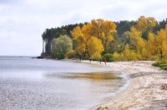 Jesień brzeg rzeki, jeziora Las Zdjęcia Royalty Free