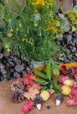 Jesień bukiet Wildflowers Wiejski styl Obraz Stock
