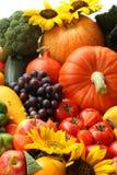 Jesień colours Fotografia Royalty Free