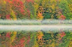 jesień courtney jezioro Obraz Royalty Free