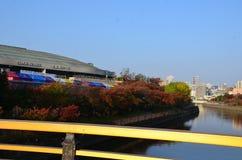 Jesień czerwonego koloru zmiana Japonia Obrazy Royalty Free