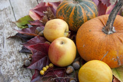 jesień dekoracja Zdjęcia Royalty Free