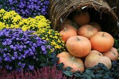 jesień dekoracja Obraz Stock