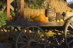 Jesień dekoracje Obrazy Royalty Free