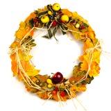 Jesień dekoracyjna Fotografia Stock