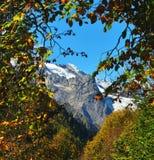 Jesień Dombay Zdjęcie Stock
