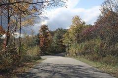 jesień droga Obrazy Stock