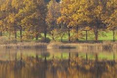 Jesień drzew odbicie Zdjęcia Royalty Free