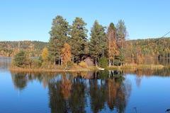 jesień drzewa kolorowi jeziorni obraz royalty free