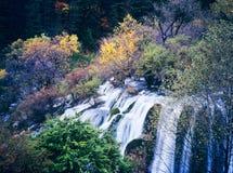 jesień drzewa siklawa Zdjęcia Royalty Free