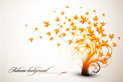 jesień drzewo obrazy royalty free