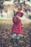 jesień dziewczyny trochę park Fotografia Stock