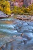 Jesień Dziewicza rzeka w Zion parku narodowym Zio i przesmyki Zdjęcie Stock